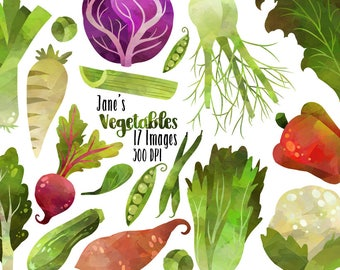 Watercolor Vegetables Clipart - Healthy Food Download - Instant Download - Kale - Fennel - Beet - Silverbeet - Lettuce - and more!