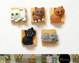 Kittens Fridge Magnet Set