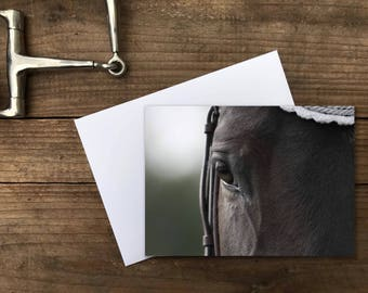 Horse card | Horse Note Card | Equine | Equestrian | English rider | Horses | Stationery | Blank Card
