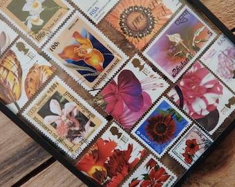 Framed colored flower wall art - sunflower gift - stamped art - flower gift