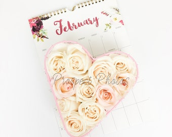 Valentine's Day Styled Stock photo | February stock photos | Pink Rose Stock Photography| Instagram photos