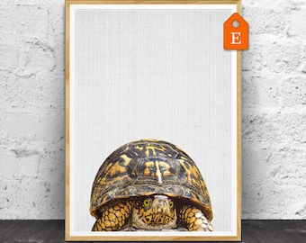 Turtle Print, Nursery Animals, Nursery Print, Animal Print, Nursery Wall Art, Nursery Decor, Nursery Animal Print, Nursery Printable, Decor