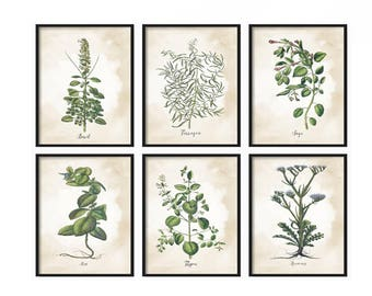 Herb Prints - Wall Art - Kitchen Prints - Vintage Prints - Farmhouse Prints - Prints - Rustic Decor - Art Prints - Botanical Print - Herbs