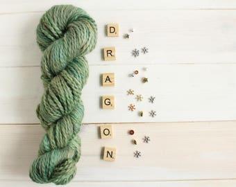 Hand dyed chunky yarn - Paarthunax themed yarn - hand painted yarn - geek yarn - indie dyed yarn - multi tonal yarn - quick yarn