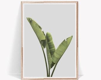 Banana Leaf,Banana Leaf Print,Banana Leaves Art,Botanical Print,Green,Leaves,Wall Art,Digital Download,Digital Prints,Botanical,Large Prints