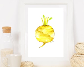 Illustrations of vegetables, watercolour, vegetables, beets, radishes, drawing vegetables illustration