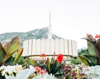 Provo Utah Temple 6