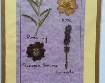 Handmade Pressed Flower Card 'The Roman Garden' Design