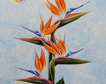 "Bird Of Paradise, Strelitzia, 10""x8"", Tropical Plant, Hawaiian Flower, Acrylic on watercolor paper, original hand painted artwork"