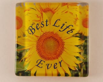 "JW 2 inch ""Best Life Ever"" refrigerator magnet, JW gift, JW items"