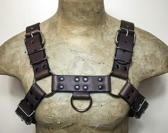 Brown leather bulldog harness L/XL
