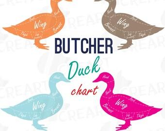 Butcher duck diagram clip art, digital duck chart, duck cuts diagram, Butcher shop, vector AI, CDR, svg, dxf, eps, pdf, png files included