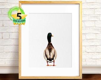 Duck Print, Duckling Print, Duck Photo, Nursery Art Print, Farm Poster, Peekaboo Animal, Nursery Farm Animal, Farm Animals Photo, Farmhouse