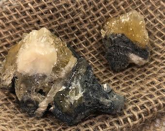 Fossilized Clam With Golden Honey Calcite Specimen - Natural Gemstone - #C9