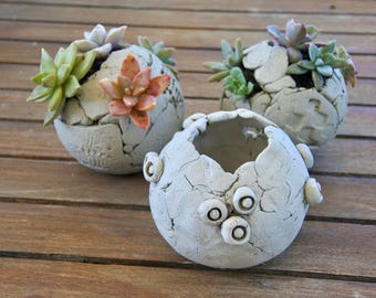 Sphere Planter