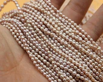 Freshwater Pearls Oval pearl Natural Purple / Champagne Gold loose pearl 3 - 4 mm 15'' Full Strand