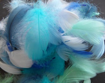 peaceful set, assorted feathers quality in 6 colors.