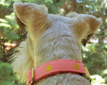 Pink Dog Collar, Girl Dog Collar, Pretty Dog Collar, Small Dog Collar, Pet Collar, Metal Buckle, Gold, Dog Collar. Fabric Collar, Polka Dot