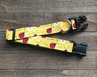 Lady Bug Day Dog Collar
