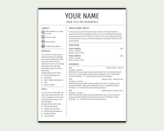 Resume Template Professional Resume CV Template Word Resume CV Resume  Template Resume Template Resume CV Template  Sample Professional Resume Templates