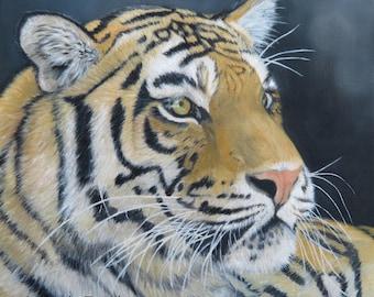 "Oilpainting tiger original painting no fine art print 11,8 x 11,8 x 0,78"""