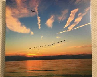 Geese with sunset over lake