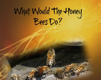 What Would the Honey Bees Do?
