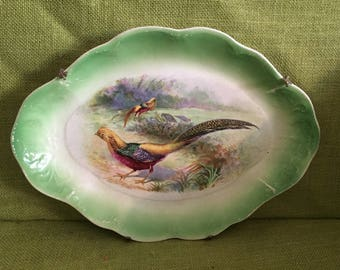 Vintage Antique Pheasant Marked Green Wall Plate Platter~Farmhouse Victorian Wall Decor