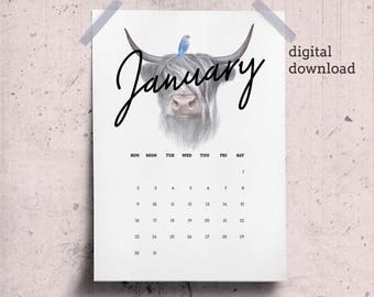 January Calendar Page 2018 Desk Calendar Printable with Scottish Cow Drawing, January Printable Animal Theme, Dawnload January Wall Calendar