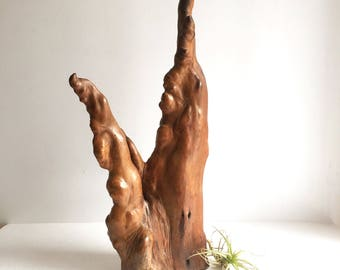 Mid Century Burl Wood Sculpture