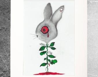 Drawing Illustration limited edition rabbit