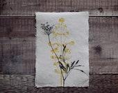 A5 Botanical monoprint: 'Hedgerow'