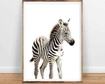 Baby Zebra Digital Print, Nursery Animal Nursery Decor Nursery Wall Art, Printable Wall Art, Instant Digital Download, Instant Printable Art