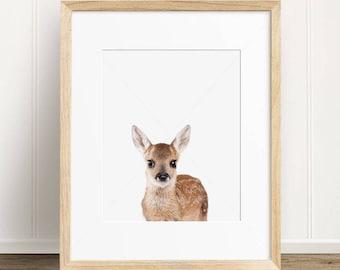 Nursery Decor Baby Dear Print, Woodland Nursery Animal, Digital Print, Baby Doe Wall Art, Instant Download Printable Art, Printable Wall Art