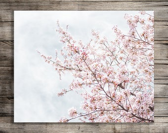Nursery Print, Cherry Blossom Tree Nature Photography, Printable Wall Art, Digital Download