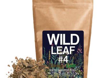 Wild Leaf #4 - Ginkgo Biloba Leaf (4 ounce)