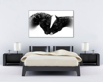 Horse Kiss Black n White