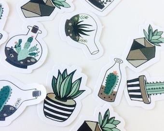 Cactus And Terrarium Stickers - Succulent Stickers - Cactus Stickers - Cactus Planner Stickers - Cactus Stationery