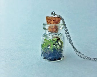 Tiny Terrarium Necklace Lanky, Irish + Juniper Cap Moss .75in Wide Cylinder