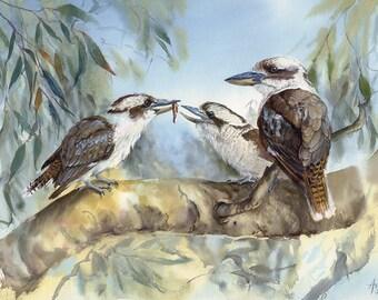 "Kookaburras limited edition print of watercolour painting, A3 mounted to fit 16""x20"" australian bird art print"