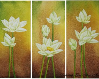 Water Lilies drifting to light