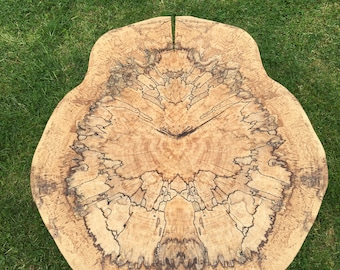 Spalted Beach Coffee Table