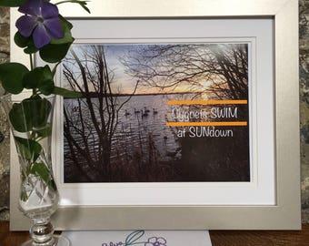 Sunset Wall Art Photo/Cygnets Swimming on Lake/Slogan Wall Art/Sunset Housewarming Gift/Swan Wall Art/ Swan Lake Decor/Ireland/Slogan Photo