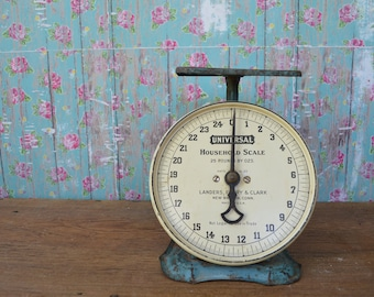 Vintage Blue Household Scale