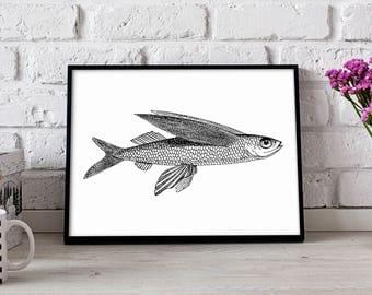Flying Fish poster, Flying Fish wall art, Nautical poster, Flying Fish wall decor, Flying Fish print
