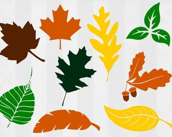 Fall Leaves SVG and Clipart, Leaf svg, leaves svg, leaf cut files, fall svg, svg files for silhouette, files for cricut, svg,cuttable design