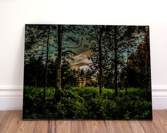 Mystic woods landscape wall art canvas