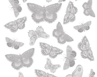 Light Grey Butterfly Paper Design - Download Instantly