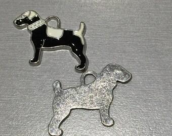 Dog: (big dog) black and white