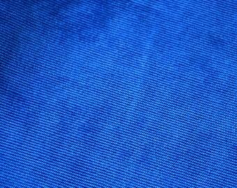 Velvet fabric ras blue ribbed